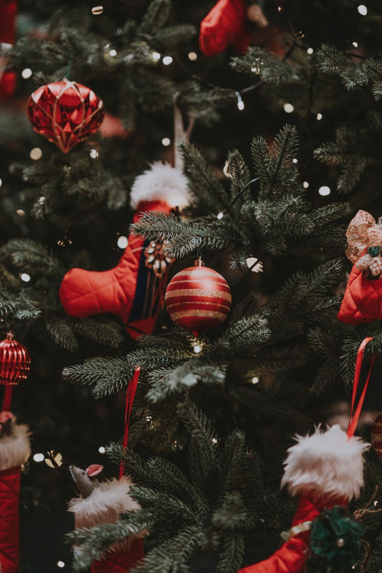Kerstmenu voor 24, 25 & 26 december